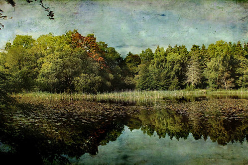 A day at the lake.