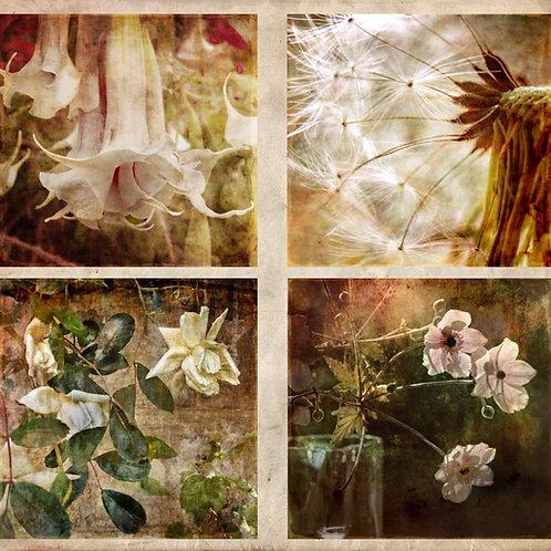 The Floral Quartet