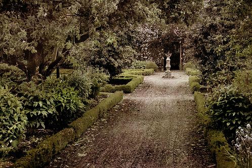 The magic garden ...