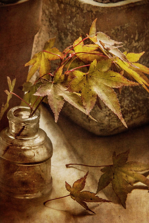 In tones of Autumn.