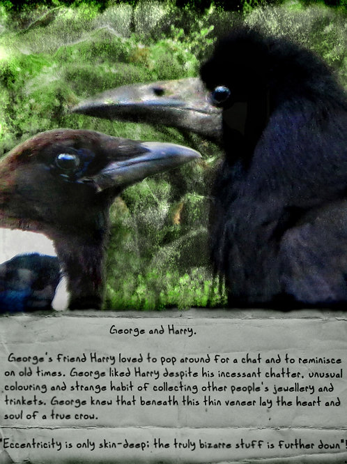 George and Harry