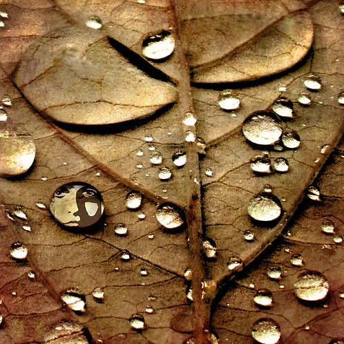 Droplets ...
