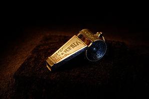 fliches whistle hp5.jpg