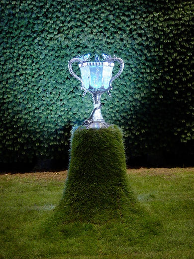 tri wizard cup  TEST13.jpg