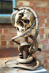 skull 05.jpg