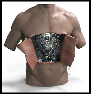 Synthetic Chest Day3 TorsoRender01 (Clea