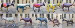 Malta Peace Donkey - CARAVAN