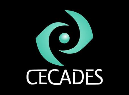 Primer Seminario online nacional de CECADES 2020