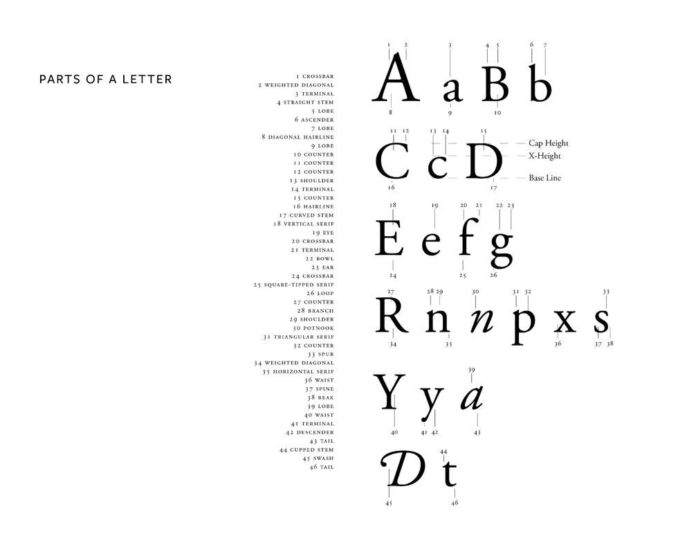 Typography Portfolio 1-02.png