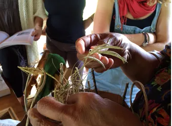 Seed Saving and Chickens: Selecting for a Resilient Future