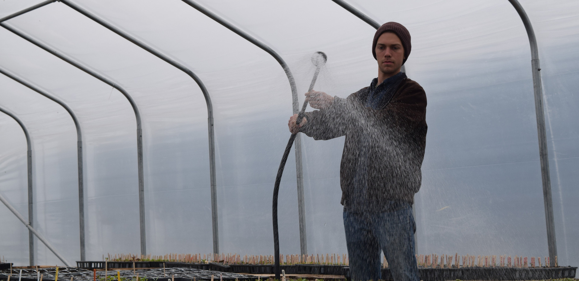 Matthew Watering Greenhouse.JPG