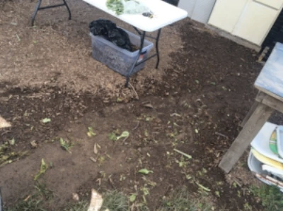 New Greywater System at the AMI Urban Farm
