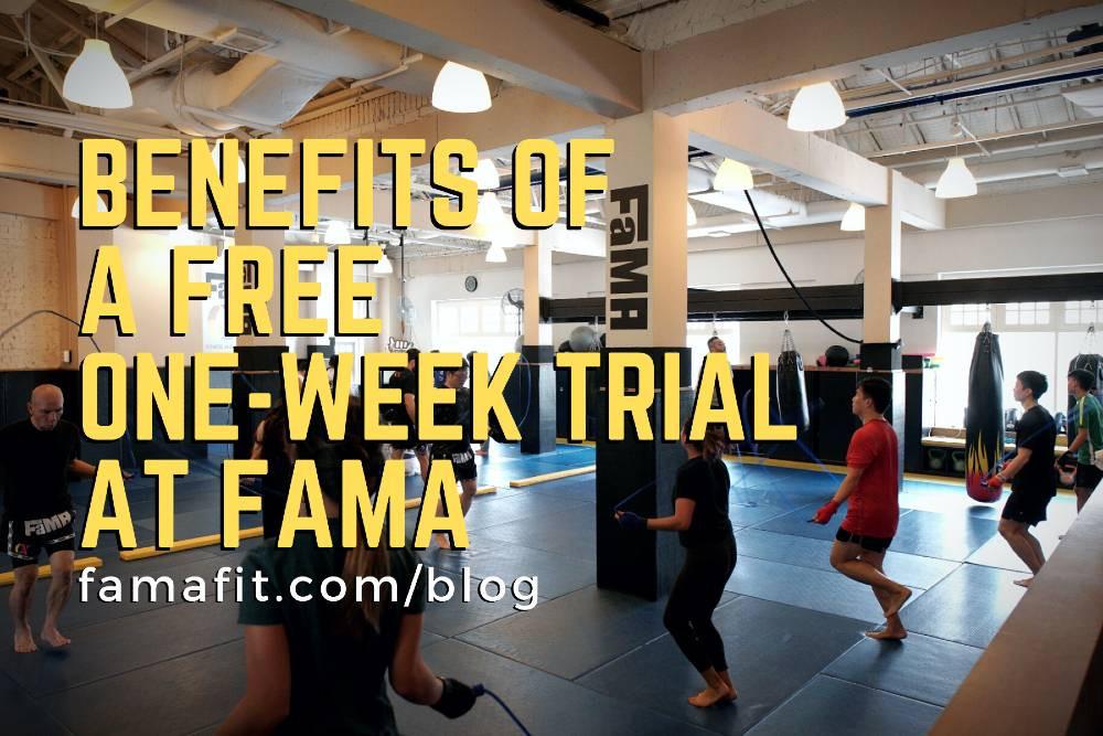 fama singapore muay thai and brazilian jiu jitsu bjj classes