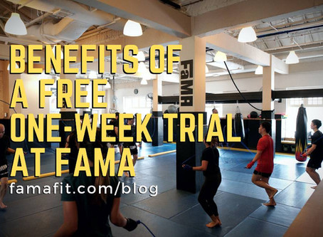 Benefits of a Free One-Week Trial at FaMA