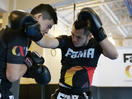Boxing for Muay Thai - Seminar Pictures