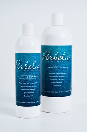 Purifying Shampoo 16 OZ - 32 OZ