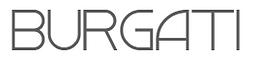 Logo Burgati_edited.png