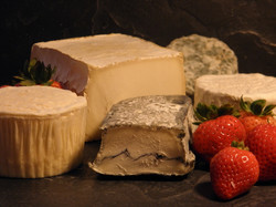 Soft Ripened Cheeses 1