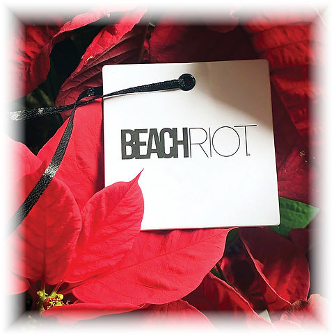 Beach Riot web graphic (862x870).jpg