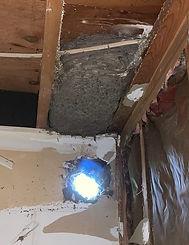 huge nest 2.jpg