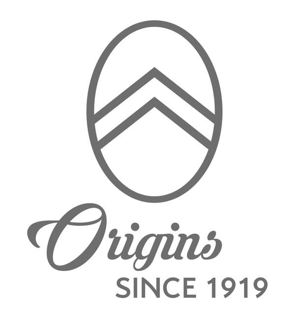 citroën dévoile le logo de son centenaire