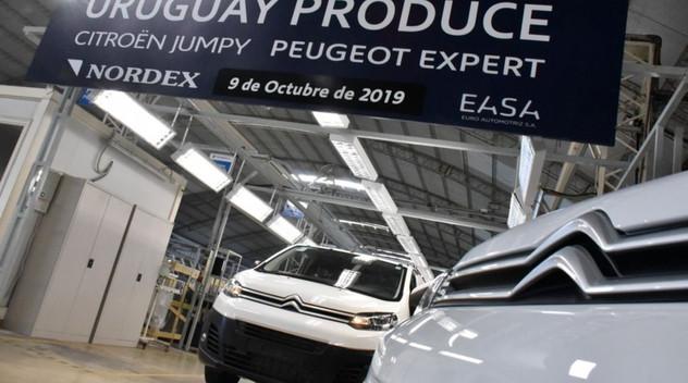 PSA a assemblé 10 000 voitures en Uruguay