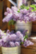 DSC_0142_edited_edited.jpg