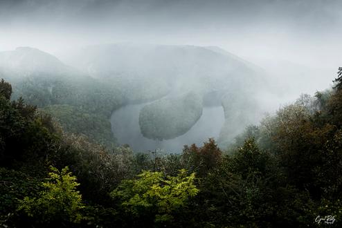 misty-meander.png