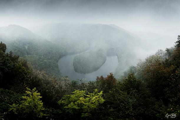 Misty Meander