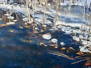 Pond with ice chunks
