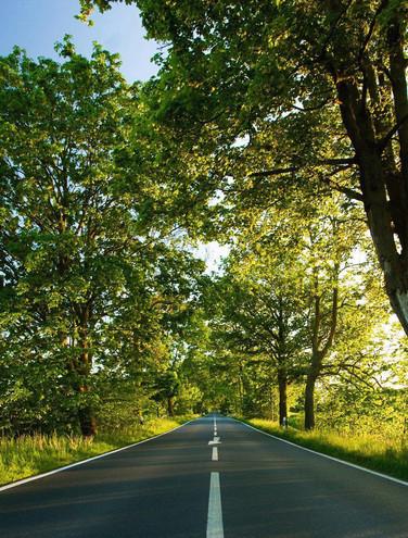 Environmental Mitigation Analysis