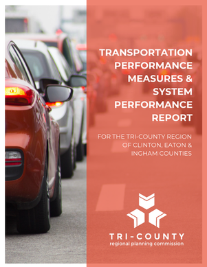 Performance Measures & System Performance Report