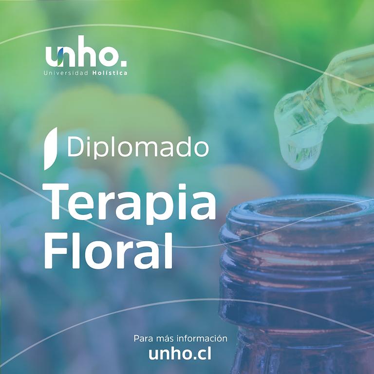 Diplomado en Terapia Floral