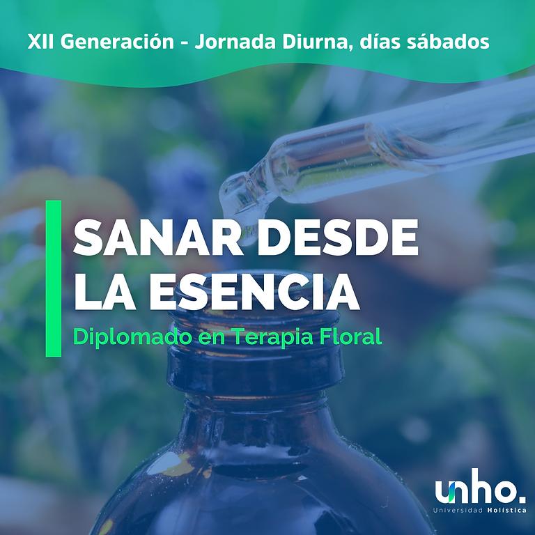 Diplomado en Terapia Floral - Versión Diurna