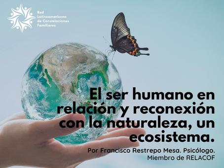 El ser humano en relación y reconexión con la naturaleza, un ecosistema.