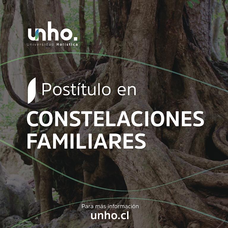 Postítulo en Constelaciones Familiares