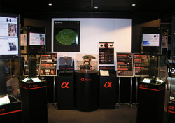Shop Front - Mega Pro Shop 31th Alpha_05