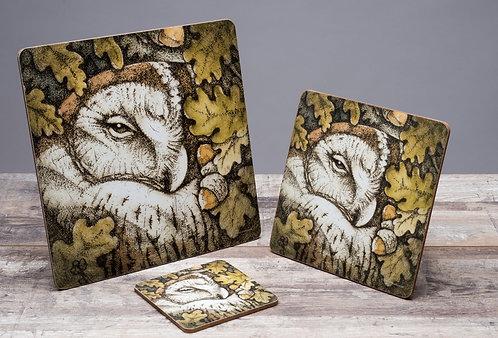 Owl & Acorn T