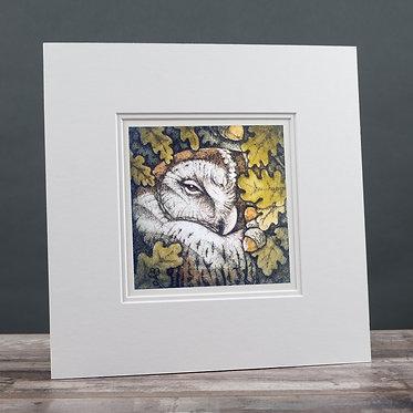 Owl & Acorns