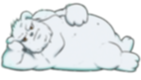2nd bear.png