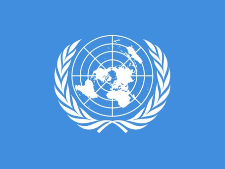 CONVOCATORIA DE ONU PARA BECAS DE PERIODISMO 2020