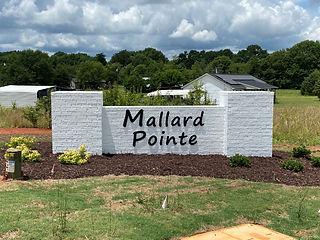 mallard point.jpg