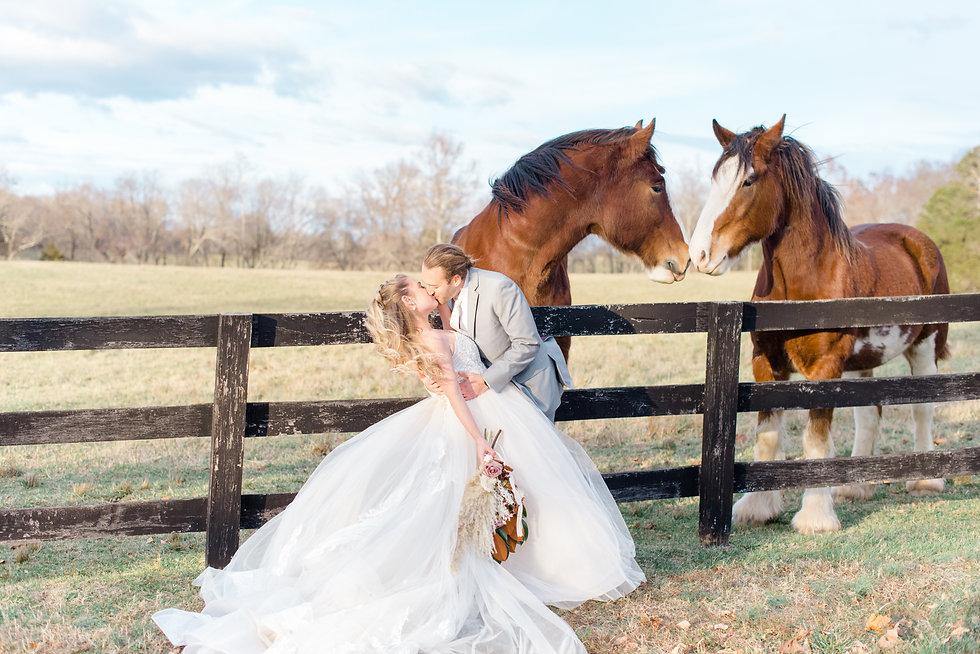 Wedding Planner located in Arlington, Virginia