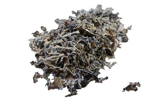 Oak Moss