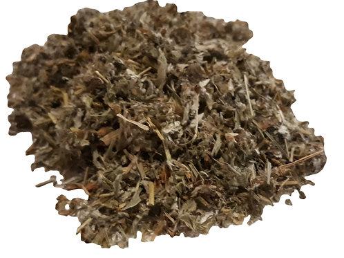 Silverweed herb