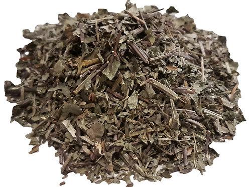 Ground Ivy  herb