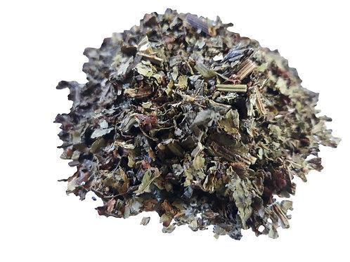 Sheep sorrel herb