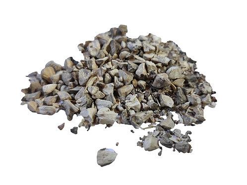 Stone root