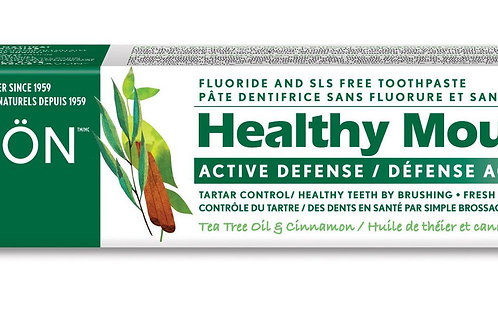 Jason Healthy Mouth Active Defense Flouride and SLS Free Toothpaste
