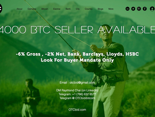 OTCbid - Bitcoin price will hit $65K as network effect has 'taken over' — Mike Novogratz